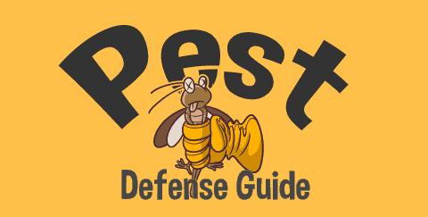 Pest Defense Guide